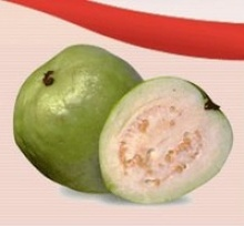 aseptic guava puree - product's photo