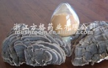 cvp extract - product's photo