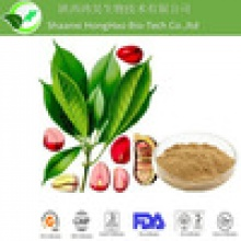 caffeine kola nut extract - product's photo