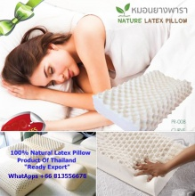 100% pure latex pillow thailand factory. - product's photo
