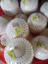 fresh young coconut diamond cut  - product's photo