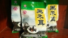 dried back fungus  - product's photo
