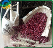 chinese dark red kidney beans - product's photo