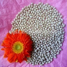 white small kidney beans  - product's photo