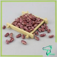 red speckled kidney beans - product's photo