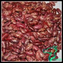 different types of pulses red speckled beans - product's photo
