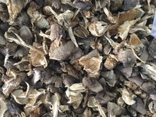 straw mushroom - product's photo