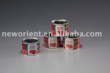 gina's tomato puree and tomato product - product's photo
