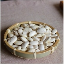 white flat kidney bean - product's photo
