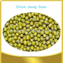 chinese green mung bean - product's photo