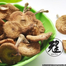 top-quality fresh wild dried mushroom - product's photo