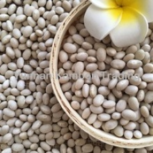 navy white beans - product's photo