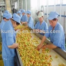 apricot puree concentrate - product's photo