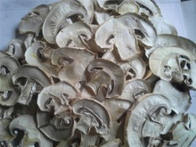 wholesale high quality ad mushroom - product's photo