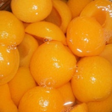 wholesale fresh canned apricot fruit with factory price - product's photo
