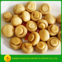 chinese best quality canned mushoom whole button mushroom - product's photo