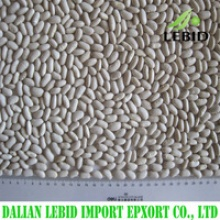 new crop white kidney beans - product's photo