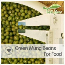 good quality wholesale big size new crop price for green mung beans seed - product's photo