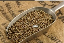 agricultural hemp seeds - product's photo