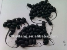 specifications  chinese black kidney bean  2012 crop  hand-picked selection.  size: 500-550 seeds/100 gram  heilongjiang origin. - product's photo