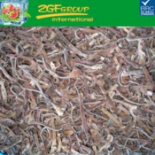 iqf frozen iqf black tree fungus strips good quality in bulk - product's photo