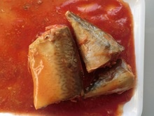 155g canned mackerel in tomato sauce - product's photo