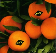 mandarin - product's photo
