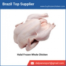 biggest exporter of halal frozen whole chicken - product's photo