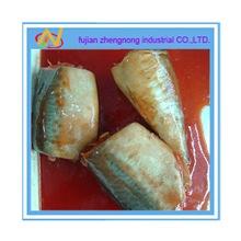 zhengnong 425g canned mackerel in tomato sauce(znmt0002) - product's photo