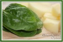 fresh palak green spinach - product's photo