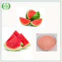 free samples freeze dried watermelon fruit powder bulk - product's photo