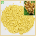 organic pine pollen extract 20:1 - product's photo