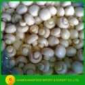 preserved mushroom in so2 to brazil market - product's photo