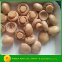 halal certificate canned whole mushroom - product's photo