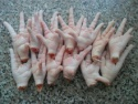frozen chicken paws - product's photo