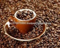 aa robusta cofee bean - product's photo