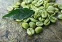 green coffee beans with wonderful quality - product's photo