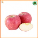 new season organic best price - product's photo