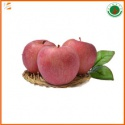 fresh organic qinguan apple - product's photo