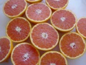 fresh naval oranges in south africa - product's photo