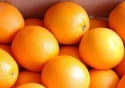 fresh valencia oranges - product's photo