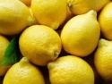 fresh eureka lemon - product's photo