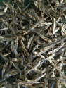 dried sprats in vietnam with the best quality - product's photo