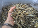vietnam dried anchovy with best quality - product's photo