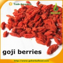 gmp 100% certified organic goji berry - product's photo