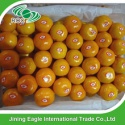 nanfeng mandarin orange - product's photo