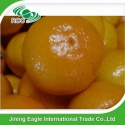 nanfeng baby mandarin orange fresh tangerine - product's photo