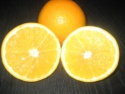 oranges - product's photo