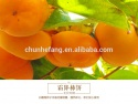 new original dried fruit wholesale - product's photo
