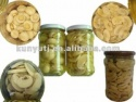 canned mushroom top quality - product's photo